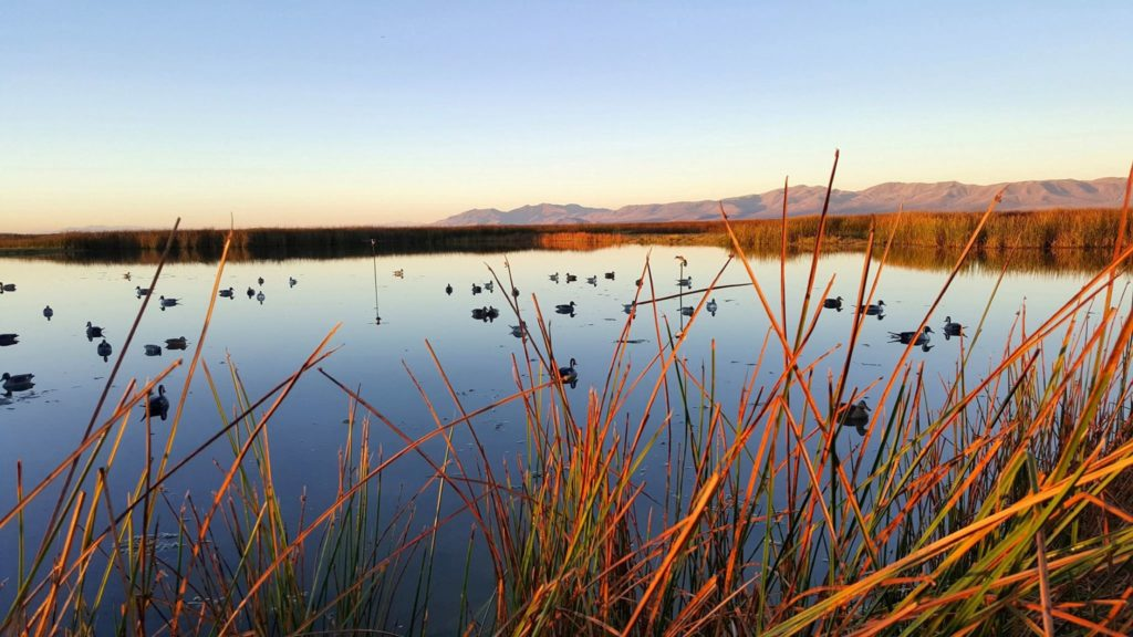 Water conservation critical to meet Utah's water needs now and into the future - Cache Valley Daily