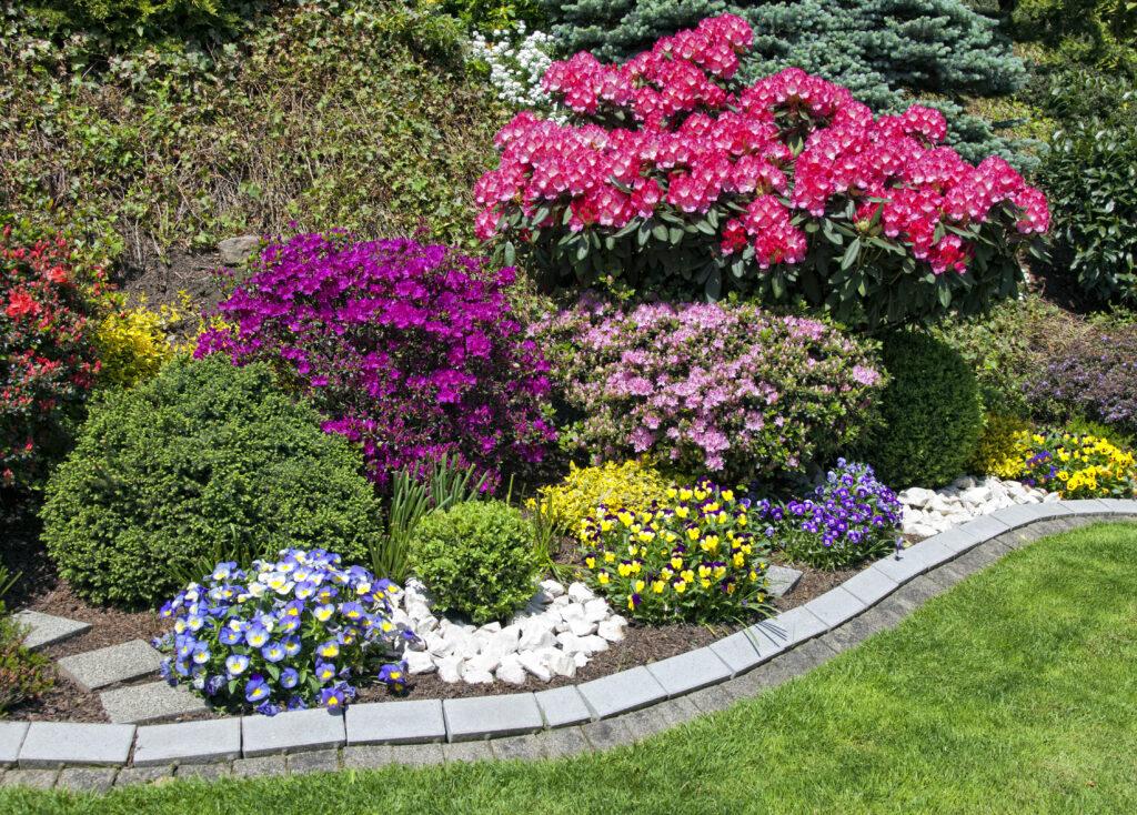 Ask an Expert – August yard and garden checklist