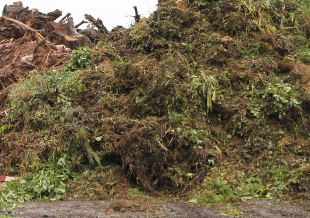 Logan City officials continue to support residents' clean-up efforts